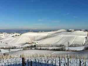 Winter blanket of snow over the vineyards of Martinenga and the cantina of Marchesi di Gresy in Barbaresco.