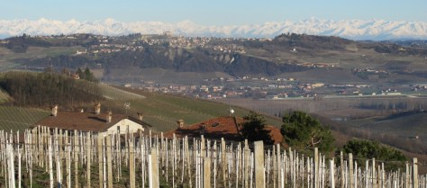 The rolling, vineyard covered hills of Piemonte lie within a stone's throw of the majestic Pennine and Cottian Alps.