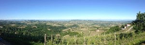 Panoramic view of the Barolo appellation and the Cottian Alps and Alpes Maritime in the background as seen from Diano d'Alba.