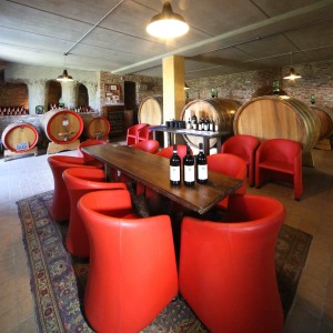 Cozy tasting room is a great way to learn about and enjoy Cascina delle Rose wines.