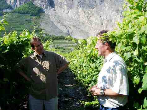 Marchesi di Grésy cellar master Jeffrey Chilcott in the vineyards of Valais Switzerland with winemaker Axel Maye.