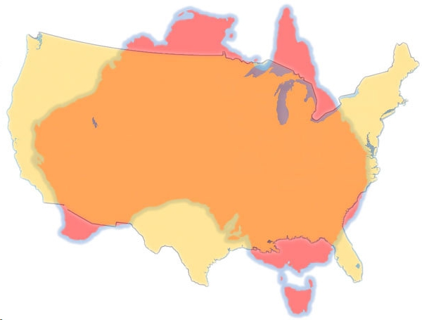 Aus-US-Comparison