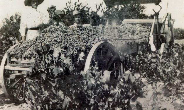 San Luis Obispo's Earliest Winemaking Instructions