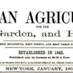Wine Making on a Small Scale: An Article first published in 1866