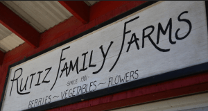Ruiz Family Farms Sign