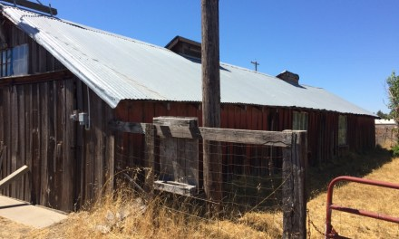 Chicken Coops and Wine Collections