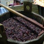 California's Original Wine – Angelica