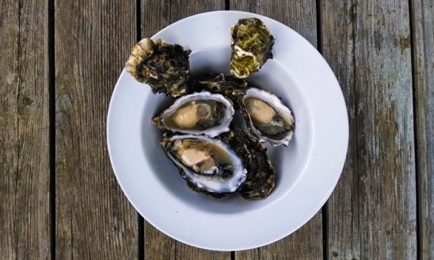 Grassy Bar Oyster Company