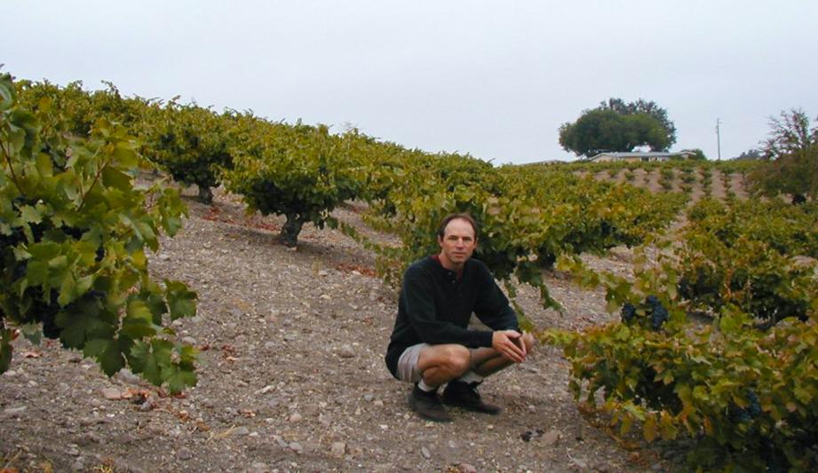 Stephen Dooley in the Dusi Vineyard