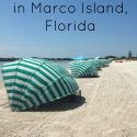 7-Fun-Attractions-in-Marco-Island