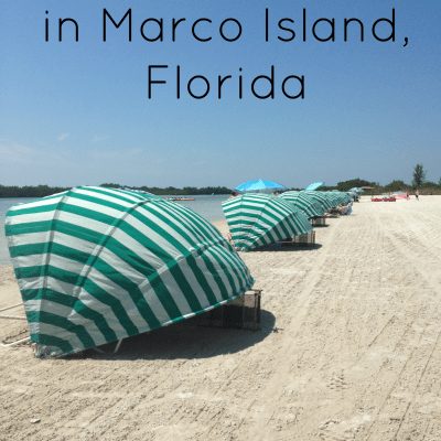 7 Fun Marco Island Attractions