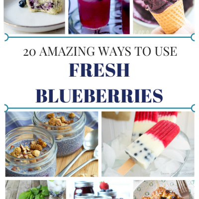 20 Amazing Fresh Blueberry Recipes