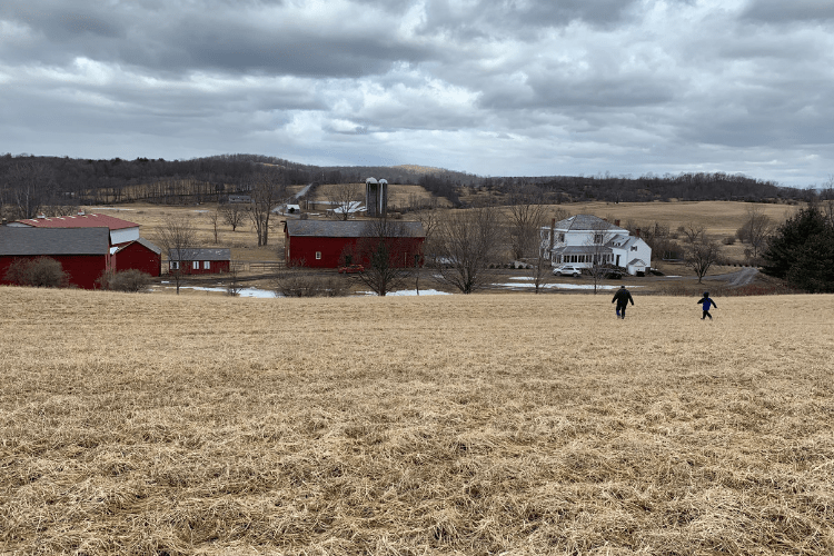 Farm vacation in New York State