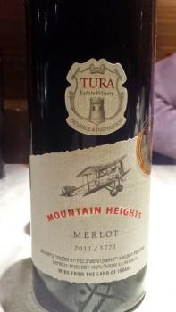 2011 Tura Merlot
