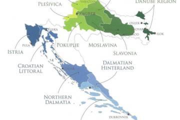 WINEormous and Grapes of Croatia