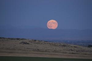 WINEormous Idaho moonrise
