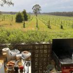Vineyard for sale Victoria