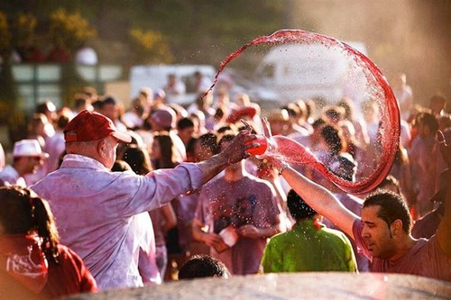 Wacky wine festival declared fiesta of national tourism interest