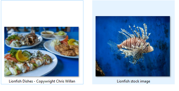 Saint Lucia wants Tourists to eat Lionfish and Safe the Reef