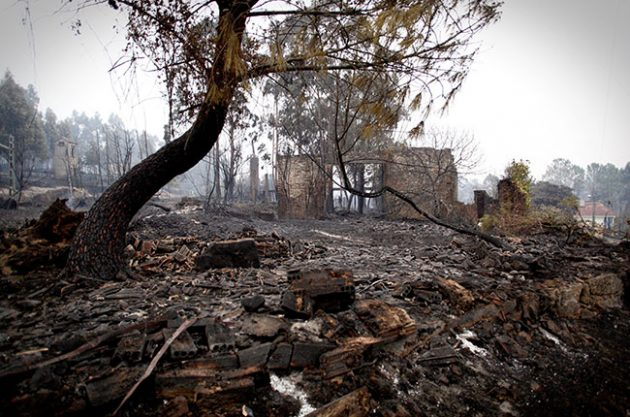 Deadly fires hit wine regions in Spain and Portugal