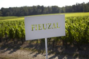 No Château de Fieuzal 2017 wine due to frost
