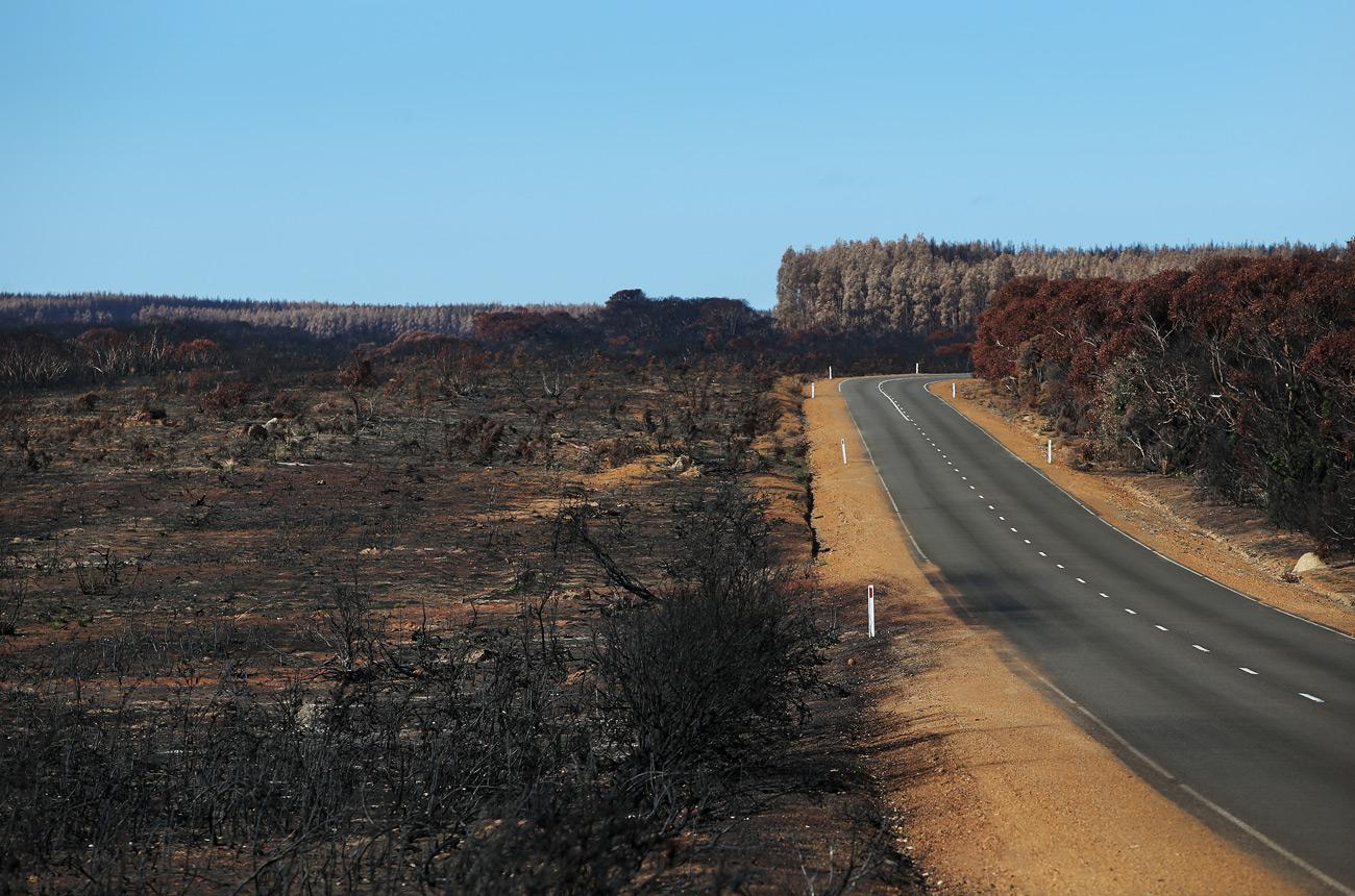 Lurton team 'not giving up' on fire-razed South Australian vineyard