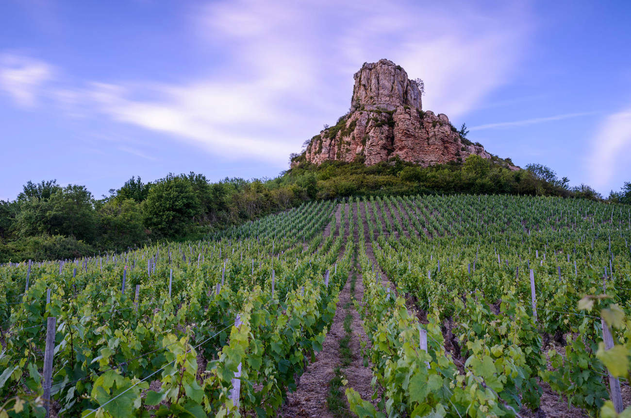 Pouilly-Fuissé granted new premier cru designations