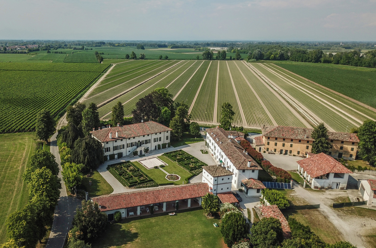 Prosecco property: Stunning vineyard for sale in Italy's north east