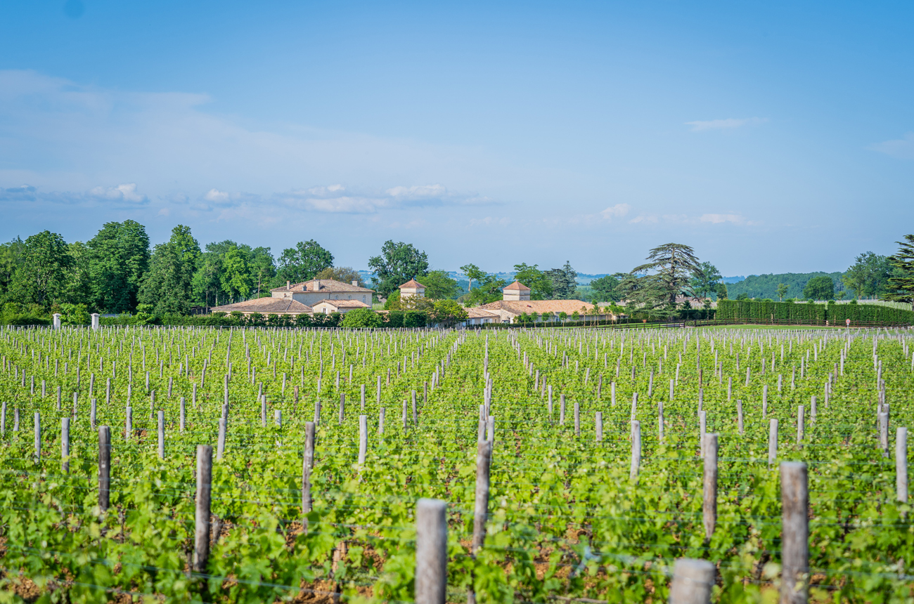 Anson: Exclusive first look inside billionaire Jack Ma's Bordeaux project