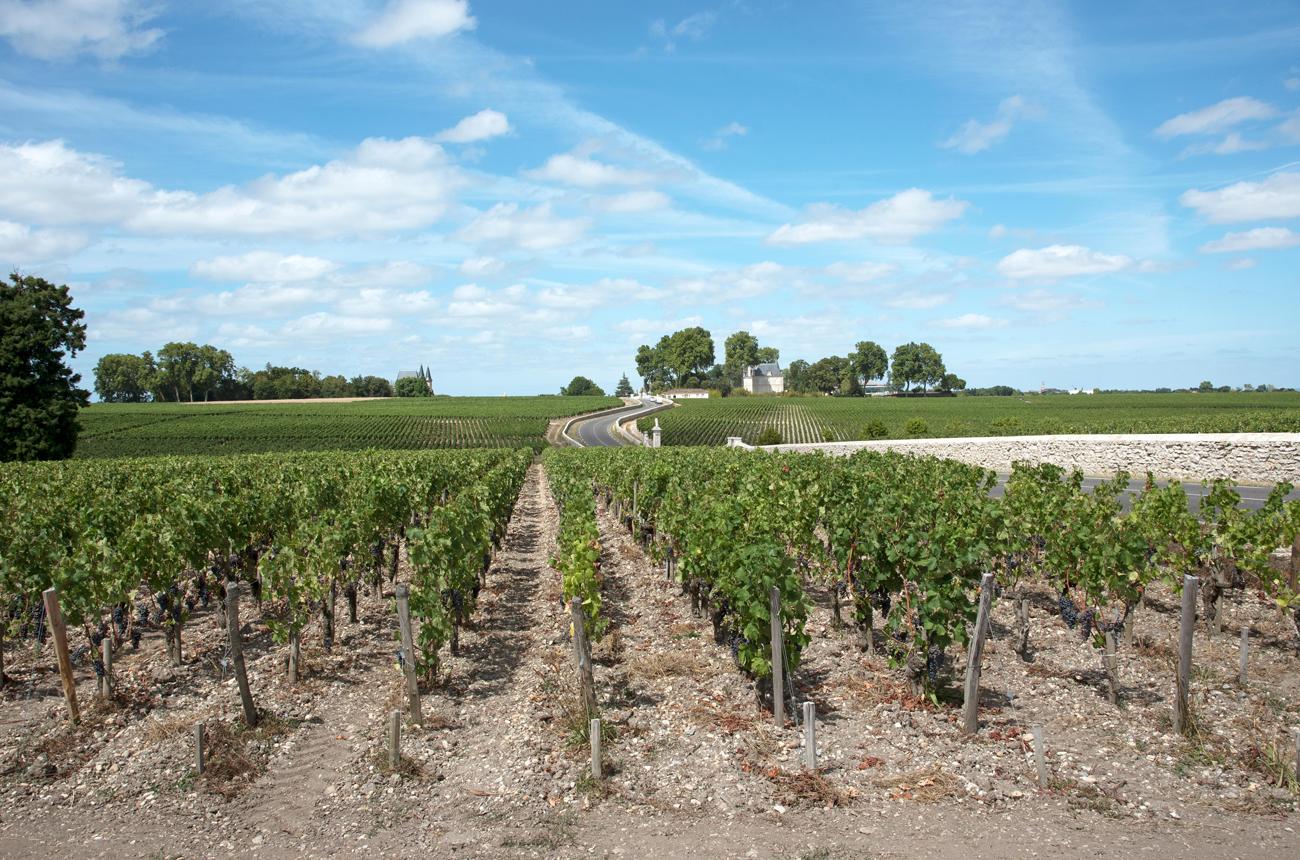 Top Bordeaux 2018 wines in the bottle: Left Bank report
