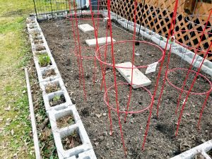 Prepping the Garden: Your Kids Will Dig It