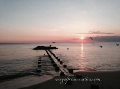 sunset on the Delaware Bay