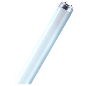 OSRA LUMILUX T8 L368401