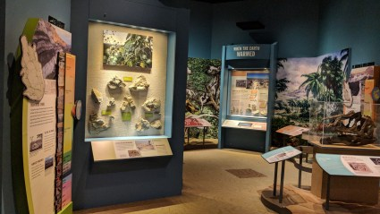 "There are two sides to the main exhibits, this is the ""natural history"" side of the area, at Washakie Museum, Worland, WY"