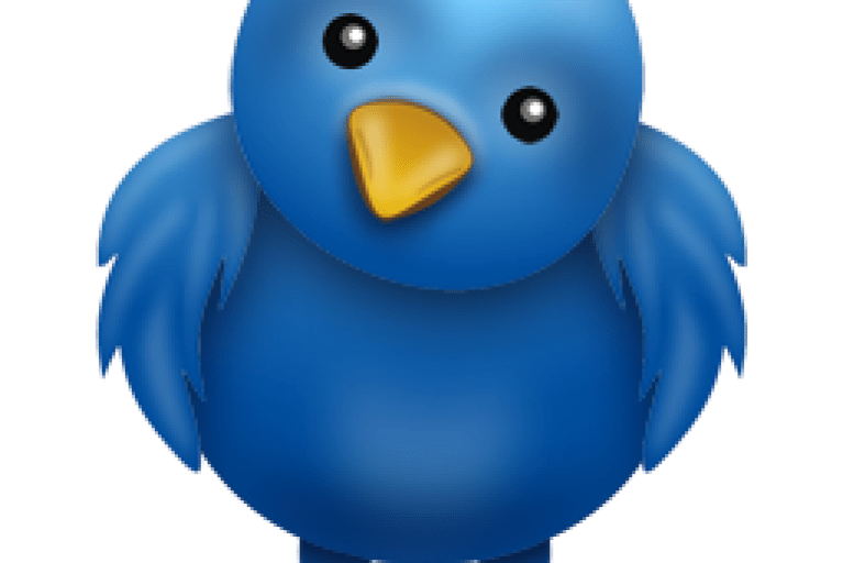 طريقة اضافة رقم الهاتف في تويتر add mobile number to twitter