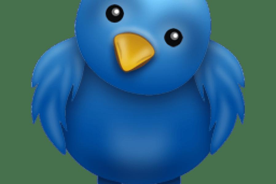 شرح تغير الصوره في تويتر How to Change Your Profile Picture
