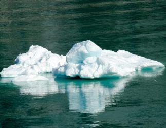 090418 Alaska Cruise 1234 copy
