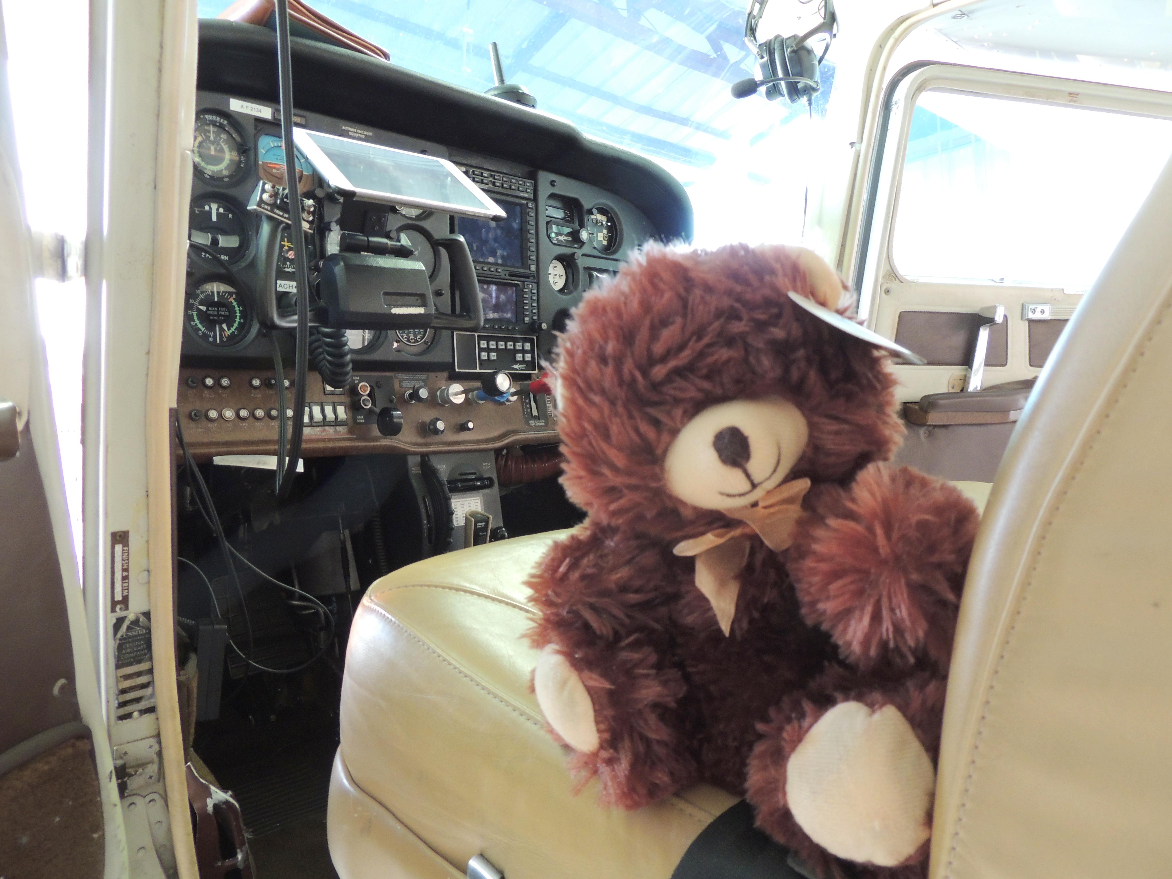 Mr Teddy ready for Adeline