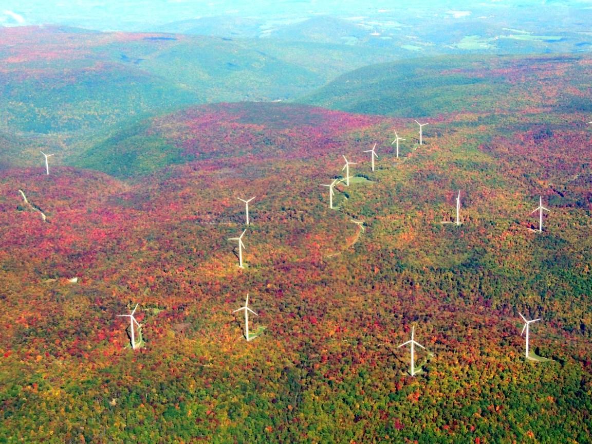 Beautiful Fall Color in PA