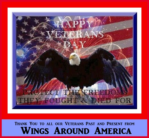 Thank you to all our Veterans past and present from Wings Around America