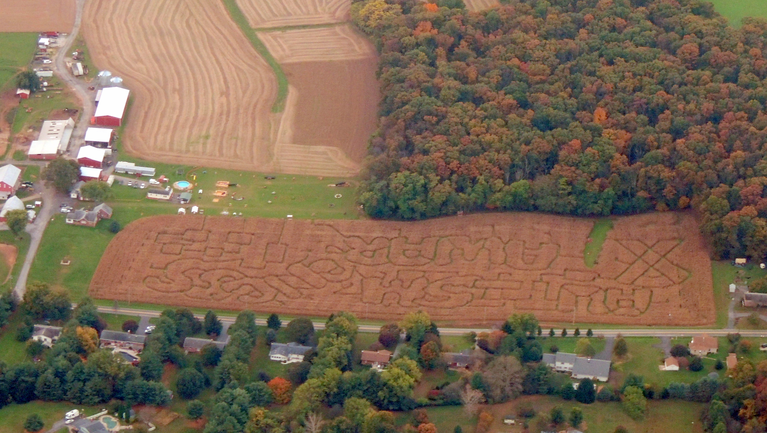 Corn maze near Westminister MD