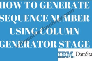 HOW-TO-GENERATE-SEQUENCE-NUMBER-USING-COLUMN-GENERATOR-STAGE
