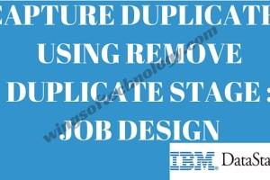 Capture-Duplicates-Using-Remove-Duplicate-Stage