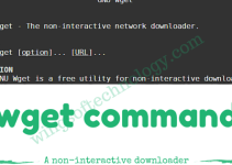 wget-command-in-linux-and-unix