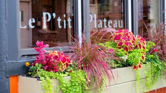 Le P'tit Plateau, Rue Drolet, Montreal