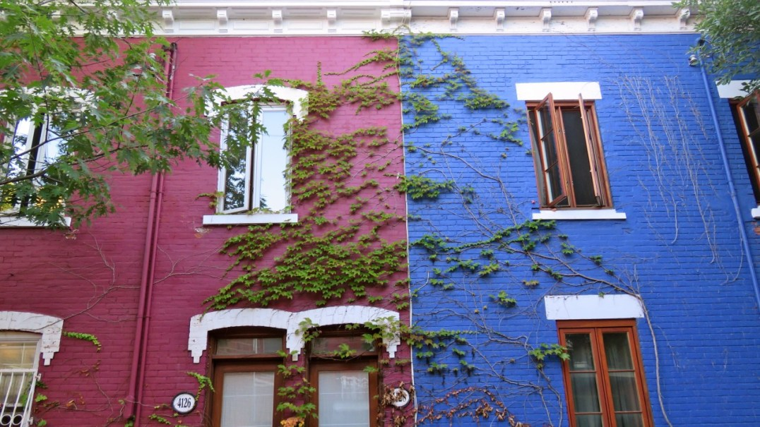 Colourful terraces, Le Plateau, Montreal