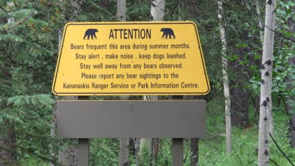 Sign to 'pay attention for bears', Kananaskis, Canada