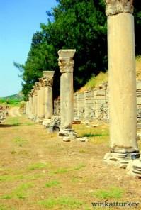Columnas del ágora