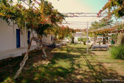 Jardines del pequeño hotel Biyikli