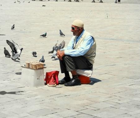 Este hombre vende a diario comida para las palomas.